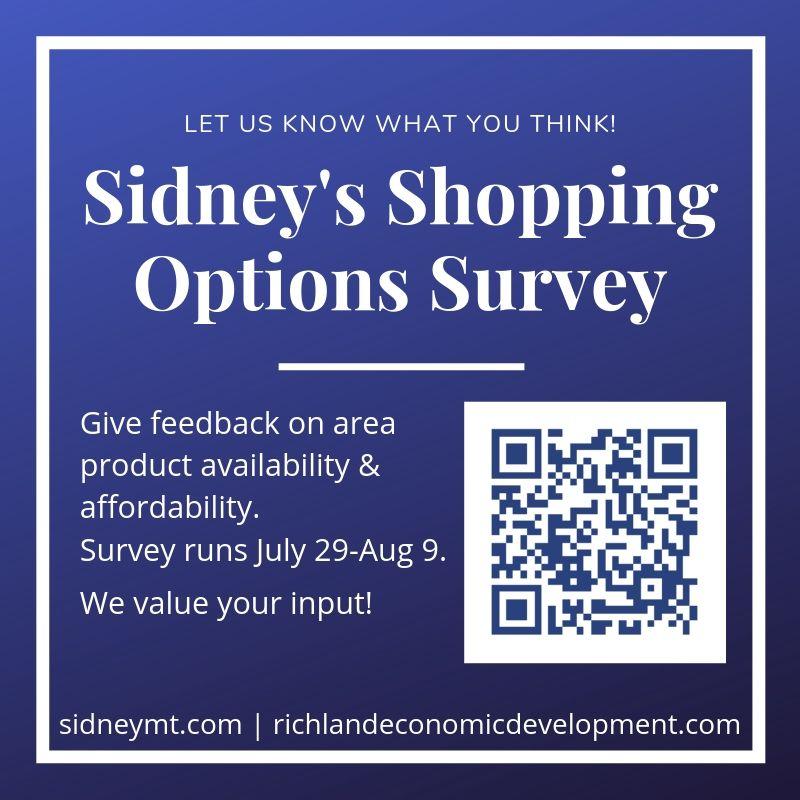 Sidneys Shopping Options Survey